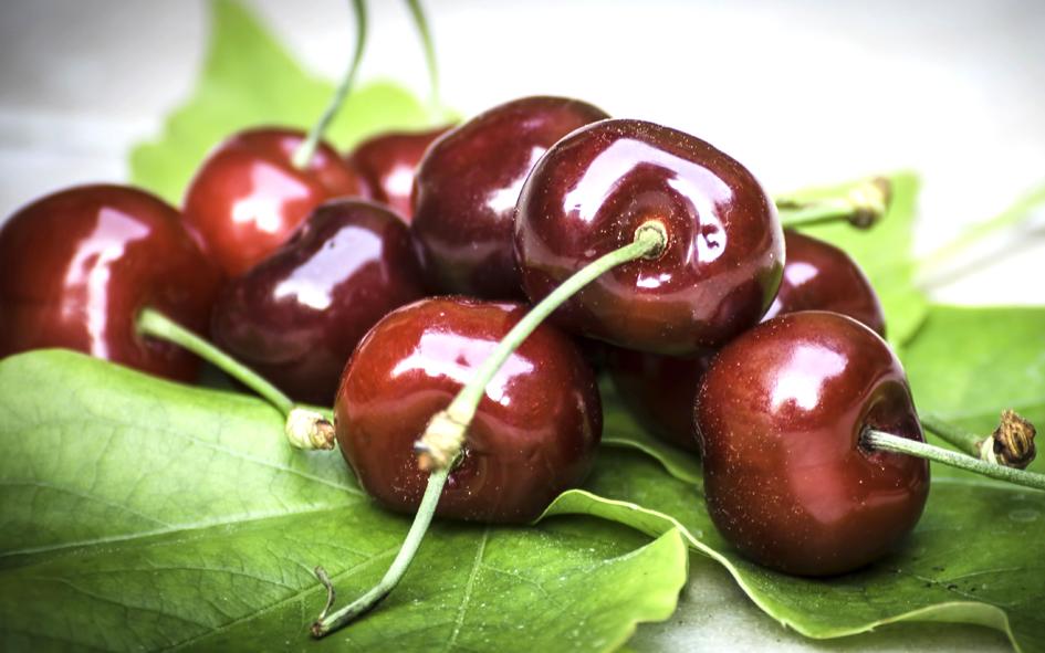 cherry-771503